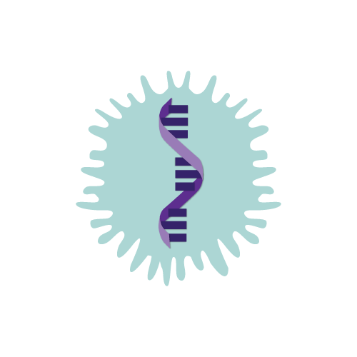 Adeno-associated virus (AAV) icon with single strand of DNA